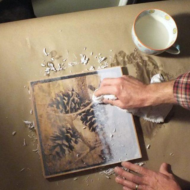 какому питомнику перевод картинки с бумаги на дерево моря