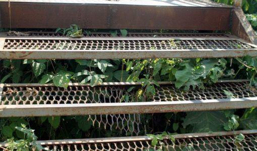 лестница в кинешме опасна для здоровья