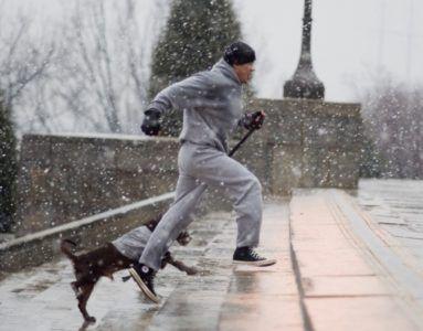 Рокки бежит с собакой по лестнице