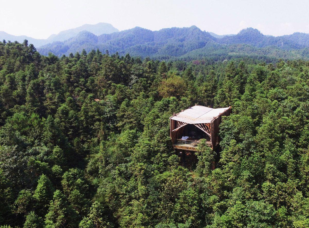 Дом на дереве «М»