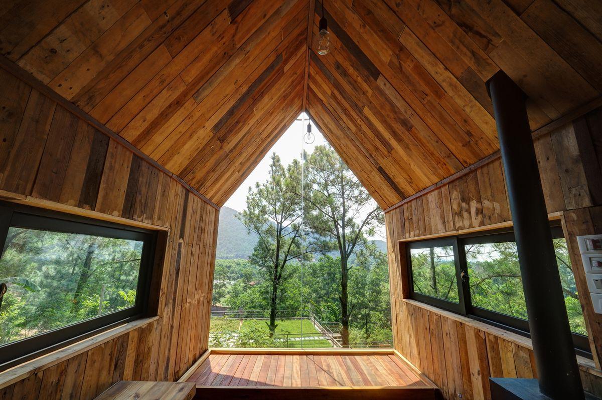 Вид из лесного дома