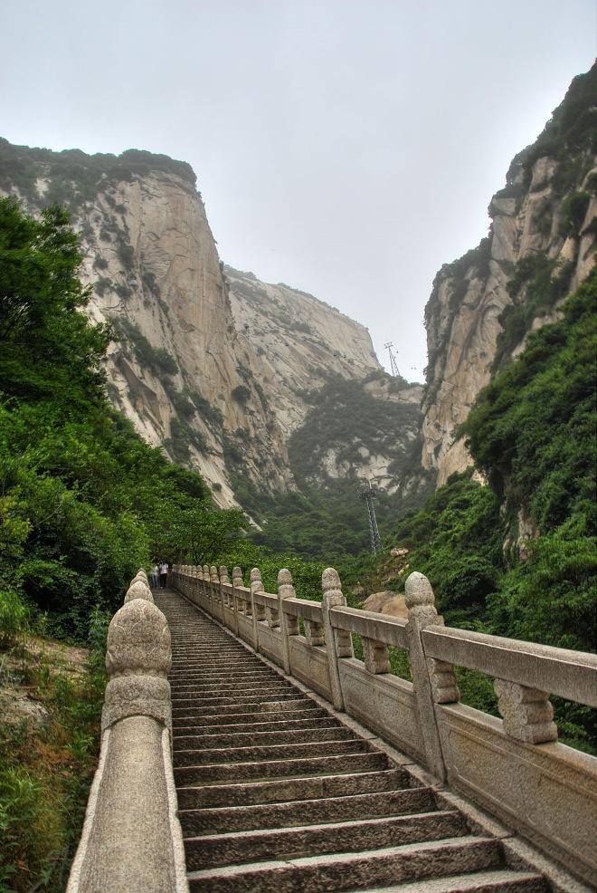 Долгий путь на цветочную гору