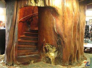 Ступени, вырубленные в дереве каури